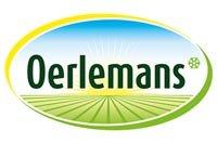 Oerlemans
